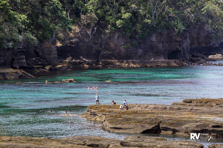 Goat Island is a 'no take' marine reserve