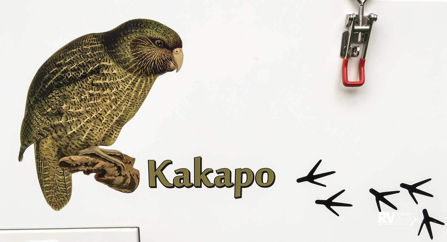 This graphic is a reminder that $150 from each purchase supports our endangered kakapo population