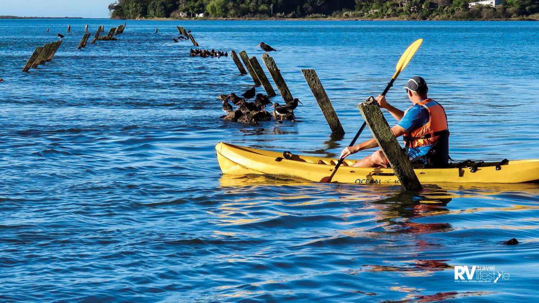 The South Seas tranquility of Moutohora's Sulphur Bay