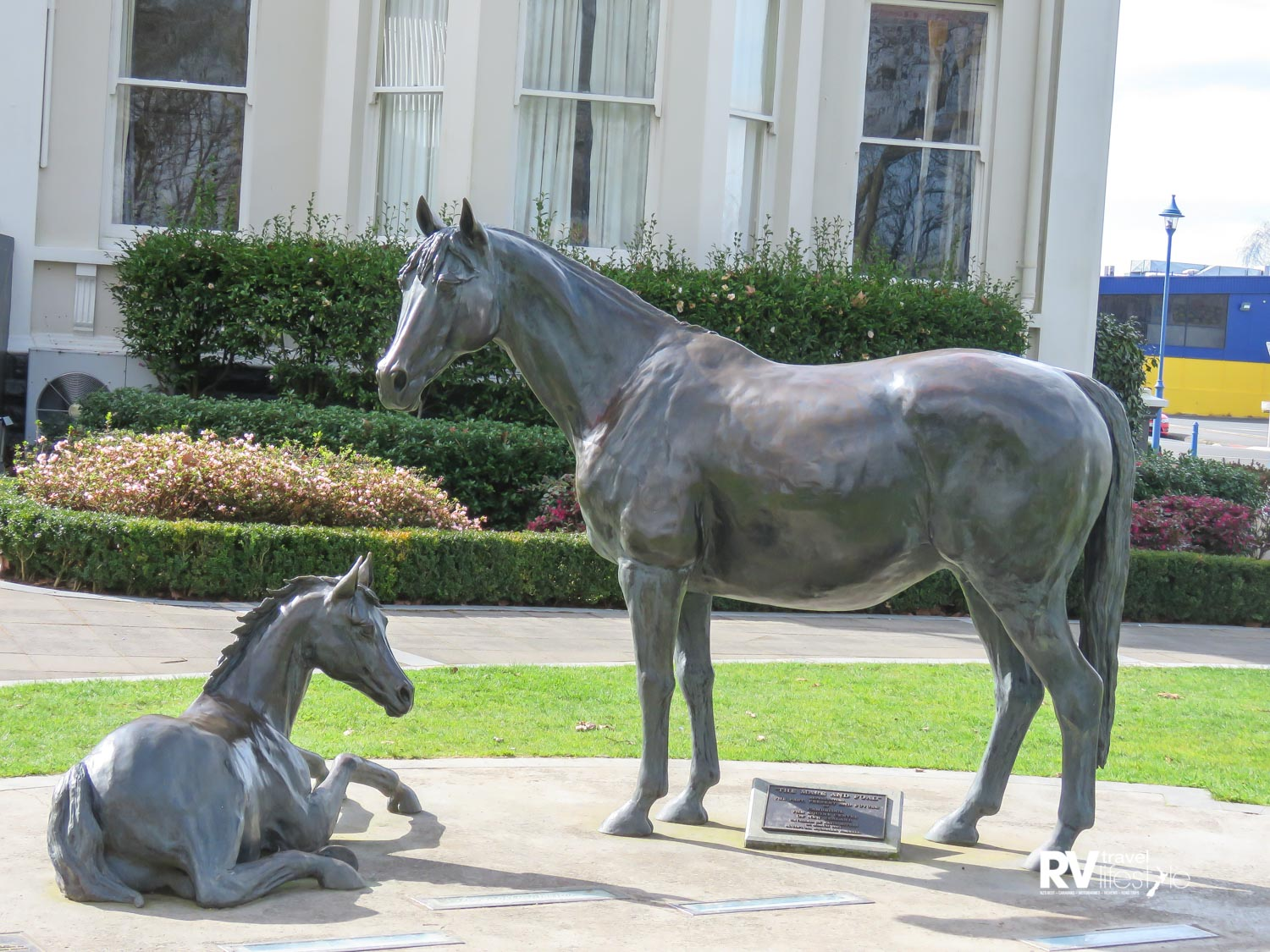 Bronze statue of a mare and her foal outside the Town Hall in Cambridge was unveiled in March 2004