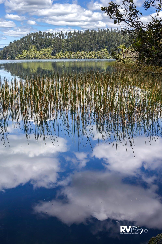 A reflective morning in Tikitapu/Blue Lake