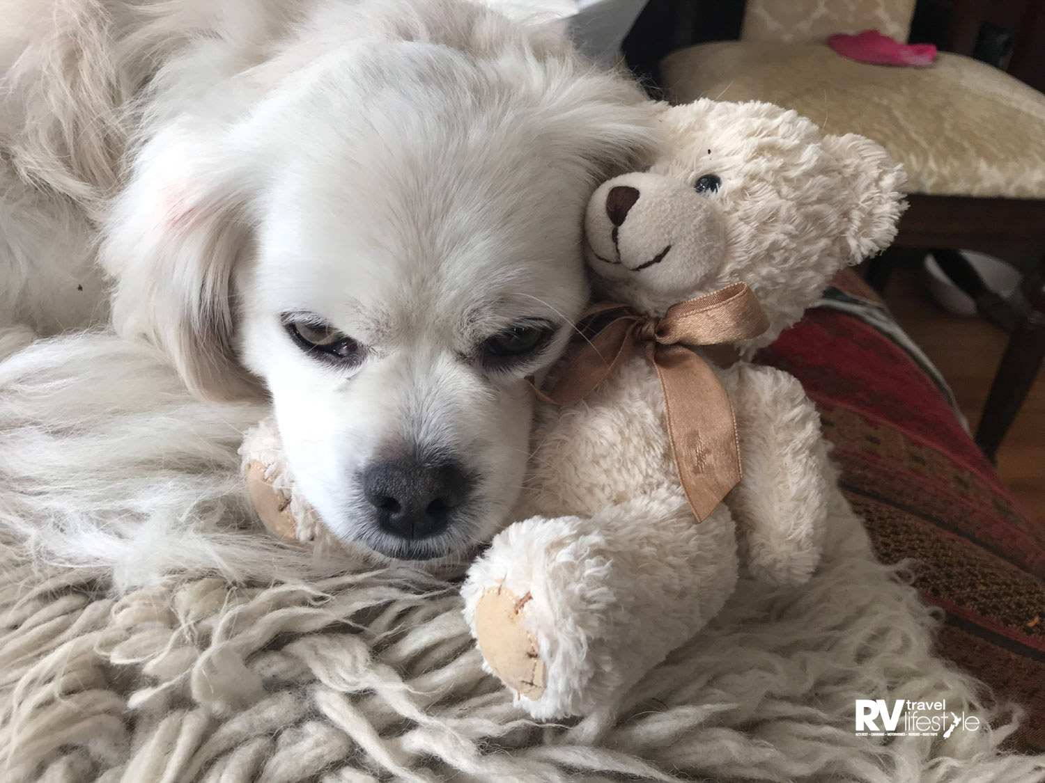 Snuggling up with my favourite teddy-bear