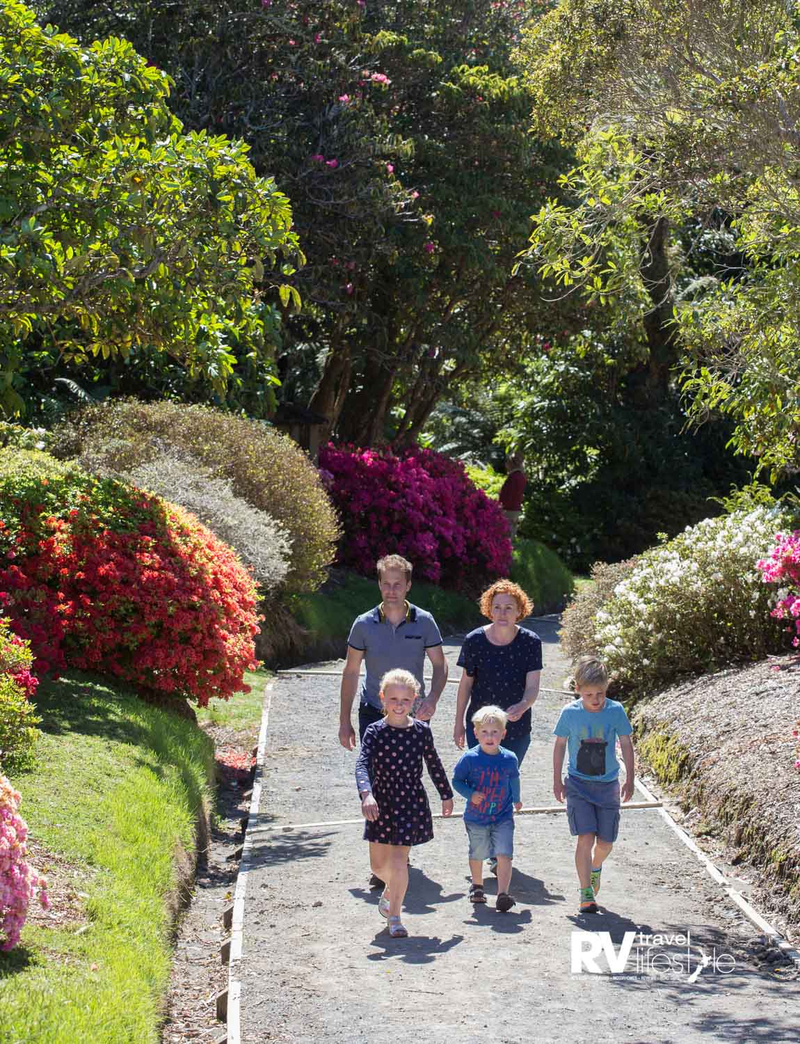 Pukeiti has a world-class rhododendron collection