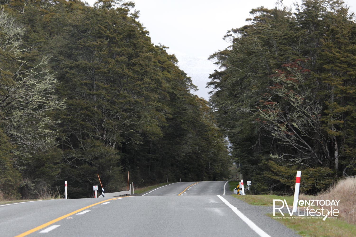 Much of the Lewis Pass and Shenandoah highways are like this – through heavy native forest