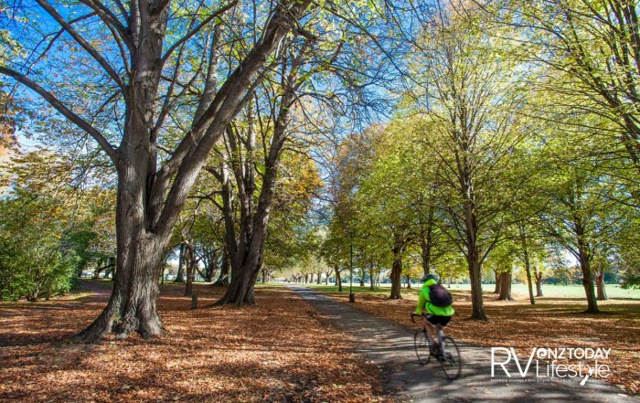 All cities need an area of greenspace like Hagley Park (credit: ChristchurchNZ)