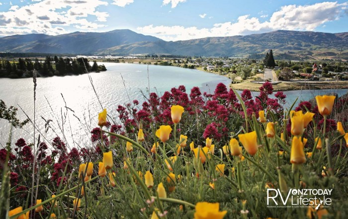 The Junction at Cromwell in springtime. Credit James Jubb, Tourism Central Otago