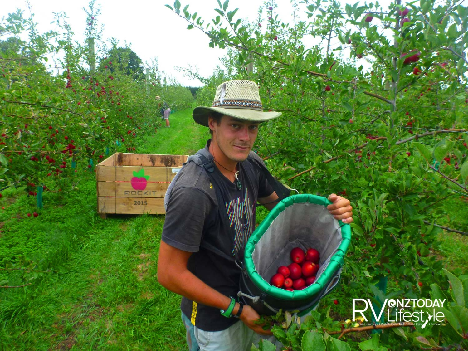 Picking produce right below the trail