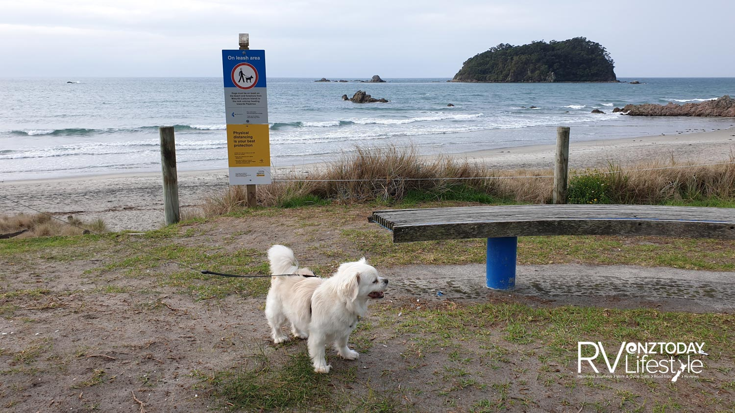 A good walk at Mt Maunganui, mama and papa disappointed we couldn't walk around the mountain or even walk me on the beach in some places, but we found signs that showed the places we could go. My hair is a bit long for sand mama reackons