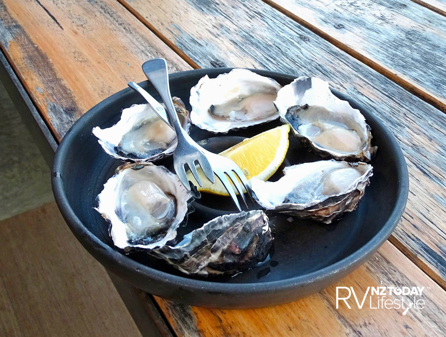A delicious plateful of oysters